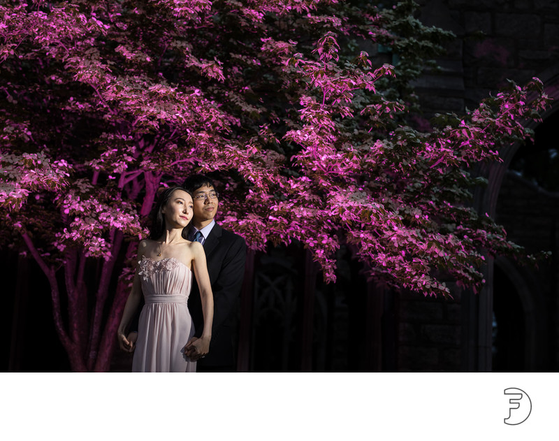 Portrait of engaged couple in front of pink tree