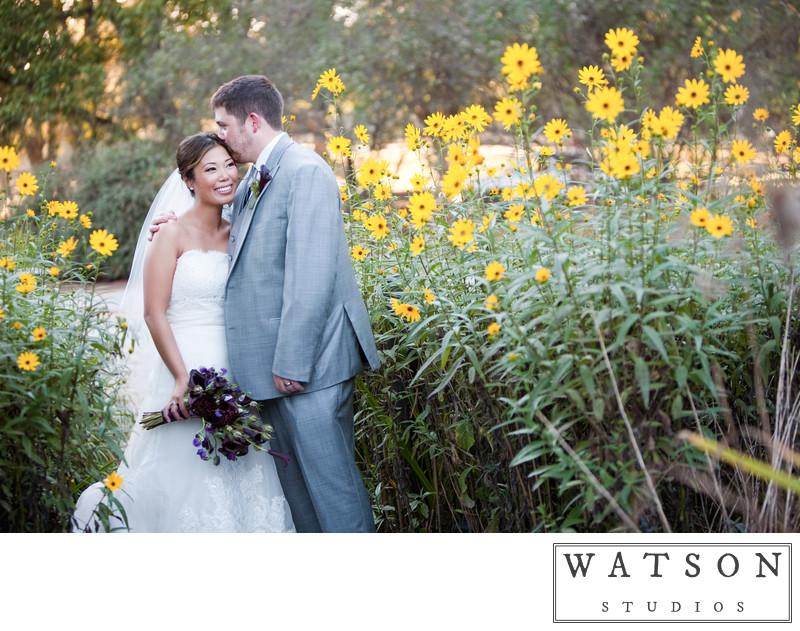Serenbe Wedding Photographers