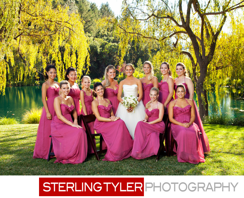 bride with bridesmaids in pink dresses in napa valley