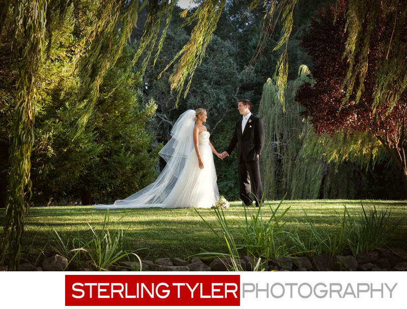 bride and groom under willow trees black swan estate