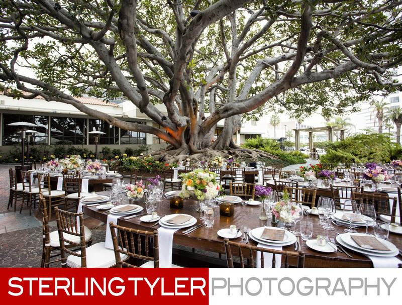 Corporate dinner at the Fairmont Miramar Hotel in Santa Monica