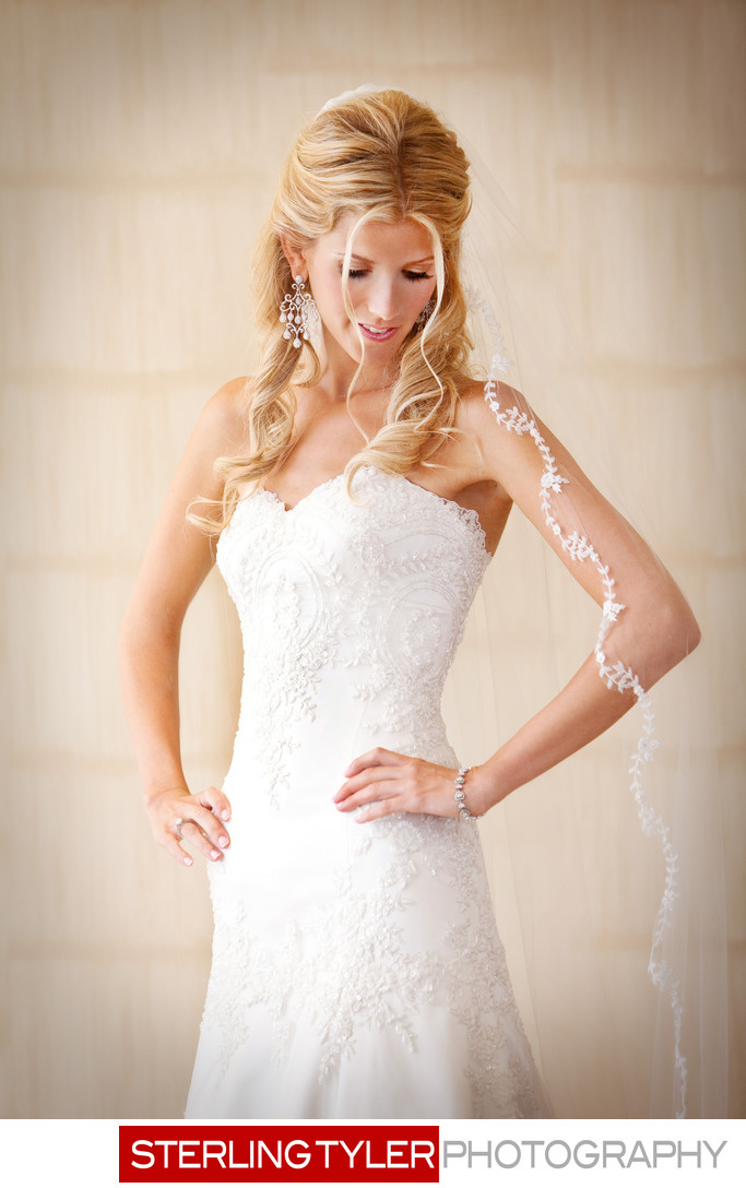 beautiful bridal portrait with long veil