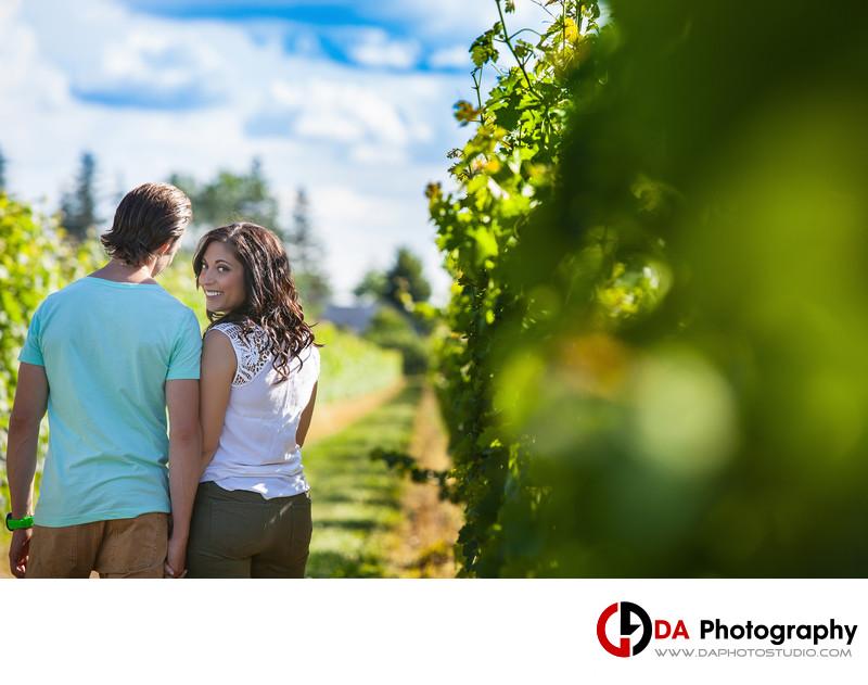 Two Sisters Vineyards at Niagara On The Lake Photos