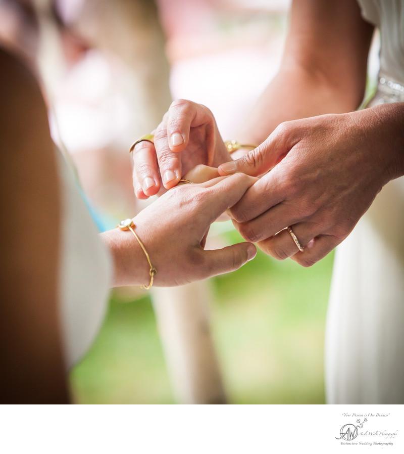 catskill mountain wedding photographer ring exchange