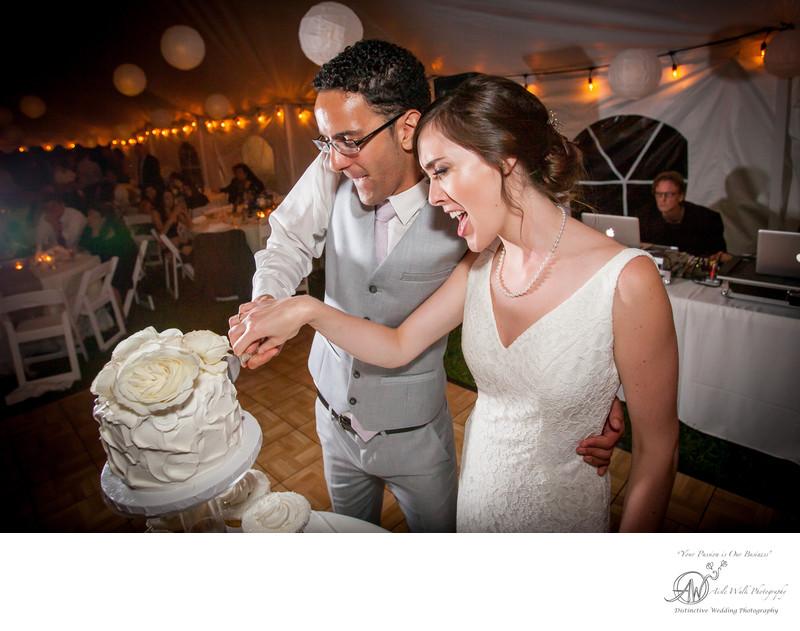 roxbury new york wedding photography cake cutting