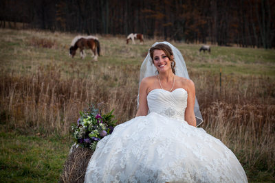 stone tavern farm wedding roxbury ny -  beautiful bride and horses