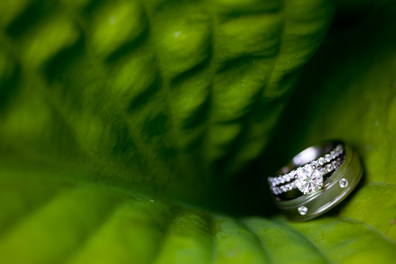 West Bend Wedding Ring Photo