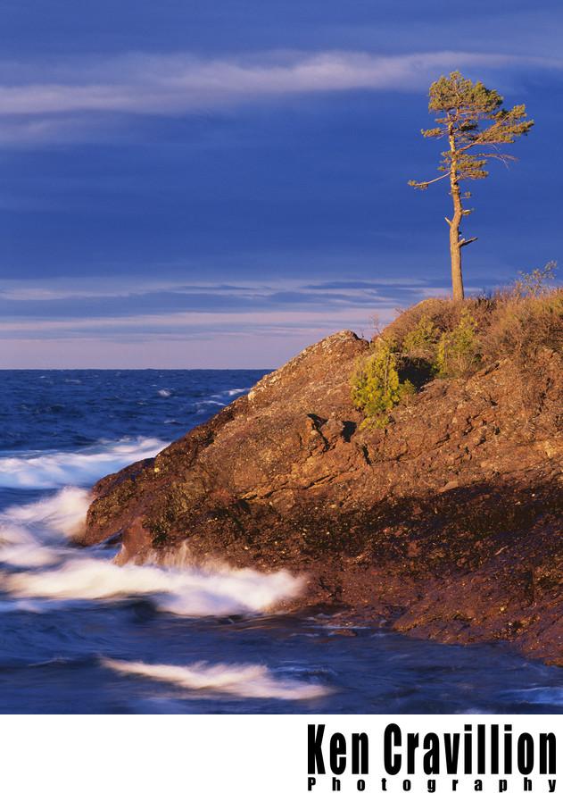 Copper Harbor Michigan Lake Superior Tree Waves Photo