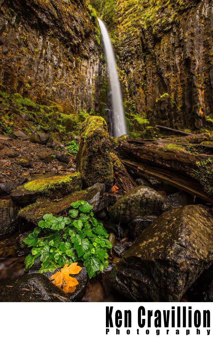 Lost Creek Falls Columbia River Gorge Oregon Photo