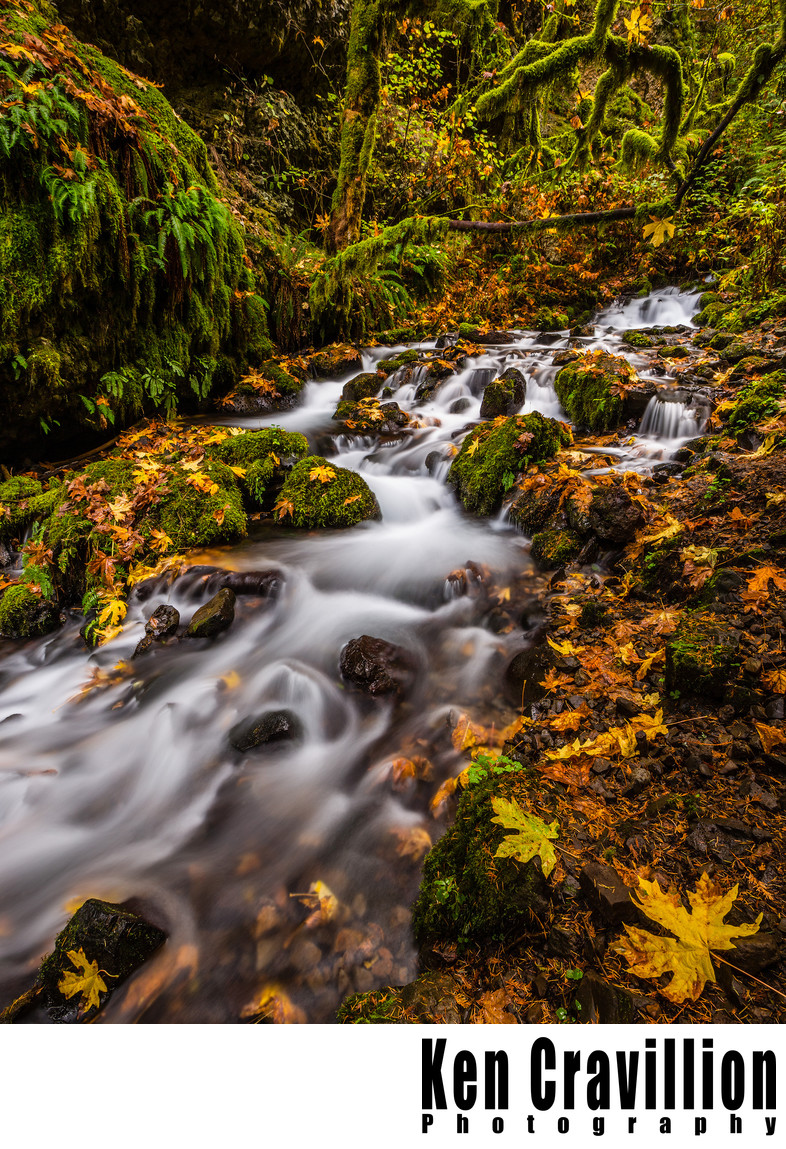 Mossy Rapids Columbia River Gorge Oregon Photo