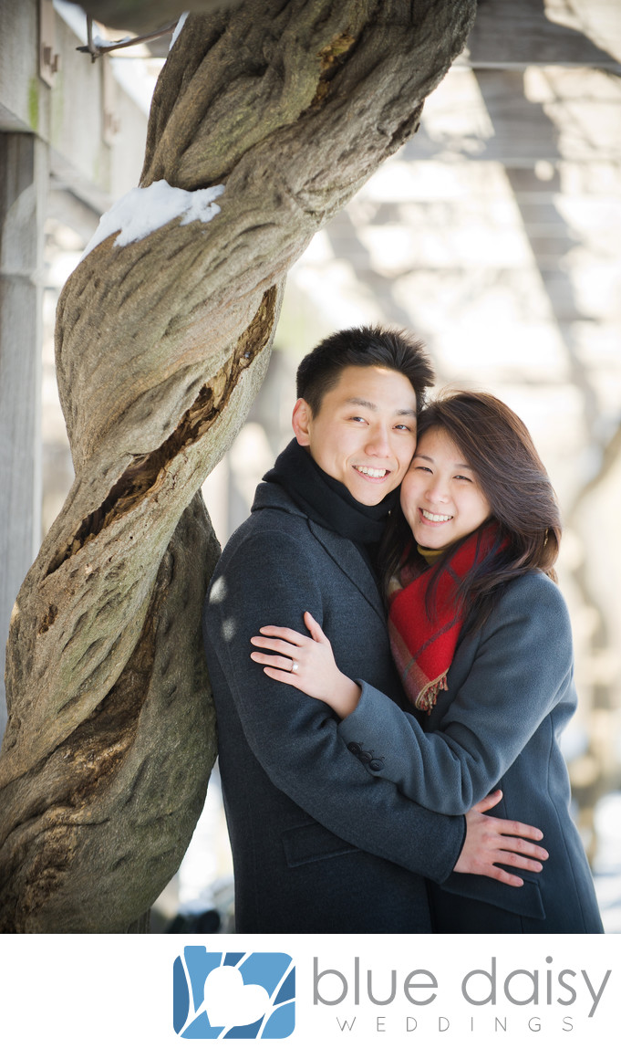 Engaged couple hugging by snow covered tree in park