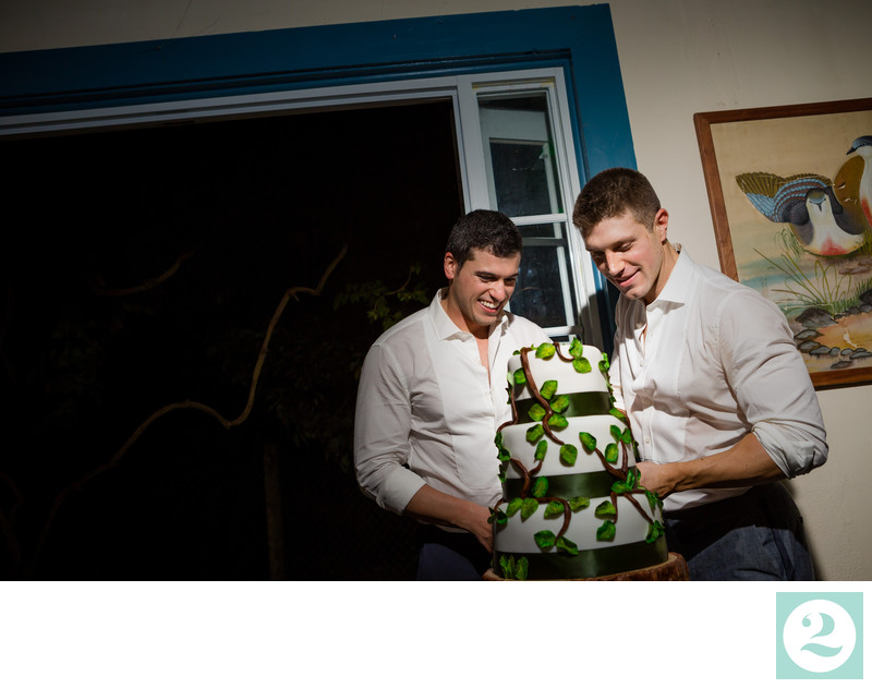 Gio and Tommy Cut their Wedding Cake