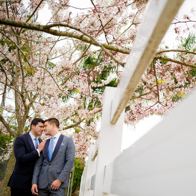 Leading lines and cherry blossoms with our two grooms