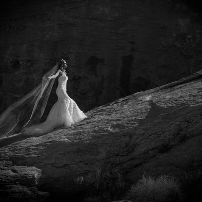 Valley of Fire Bridal Portrait Photographer