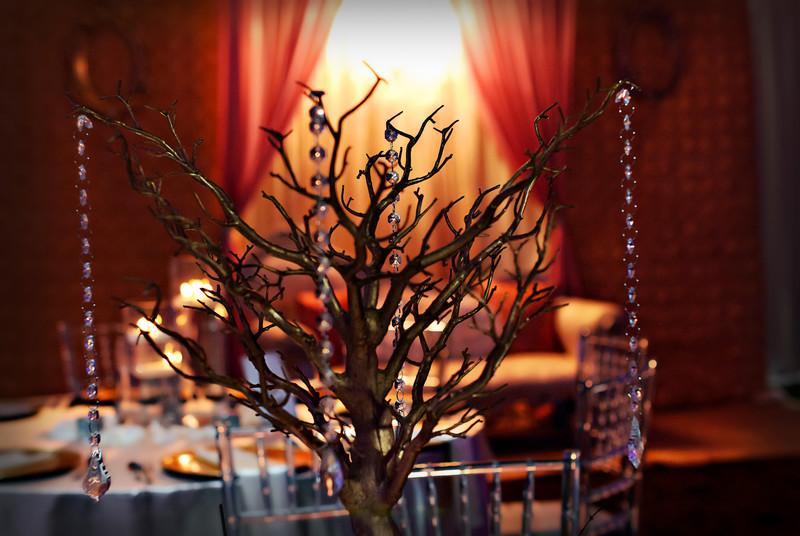 Wedding Reception Photography Indian Marriott Atlanta