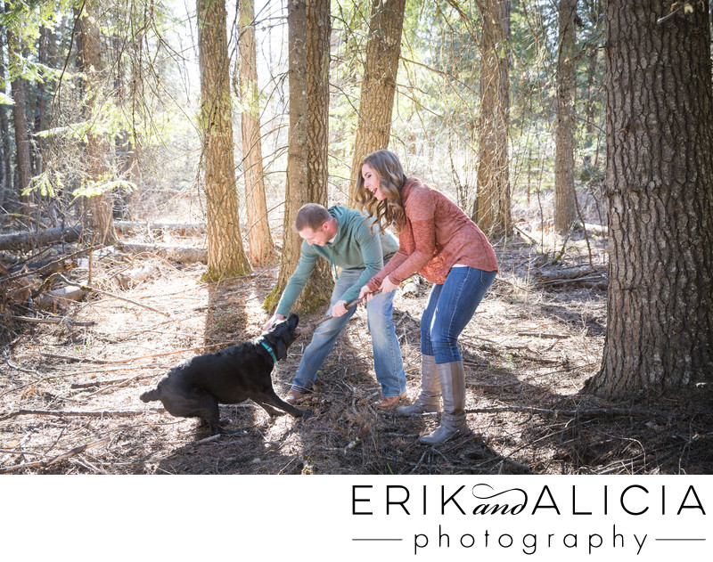 fetch with dog engagement session