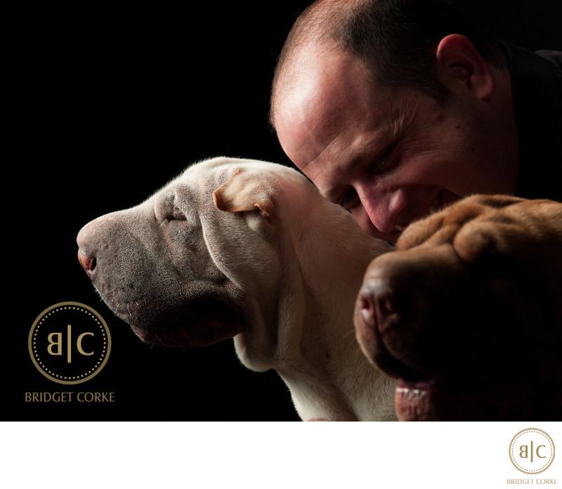 Studio Pet Photography Johannesburg Sharpei