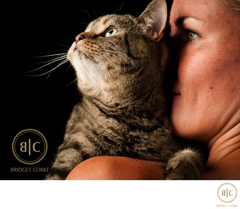 British Short Haired Cat Pet Photographer Johannesburg