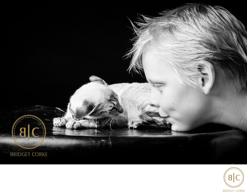 Top Johannesburg Bulldog Photographer
