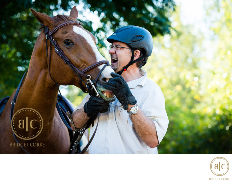 Quirky Horse Photographer Johannesburg