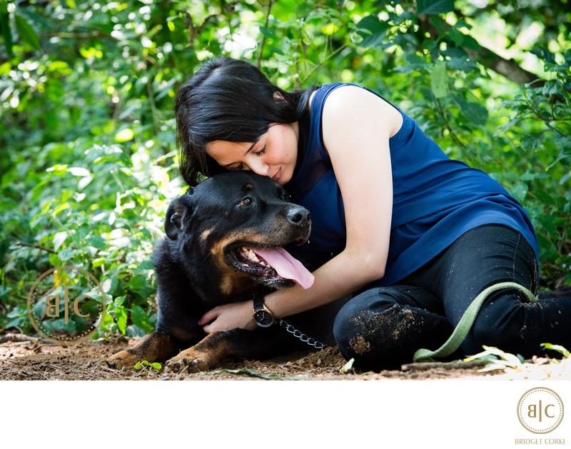 Rottweiler Pet Photographer Johannesburg
