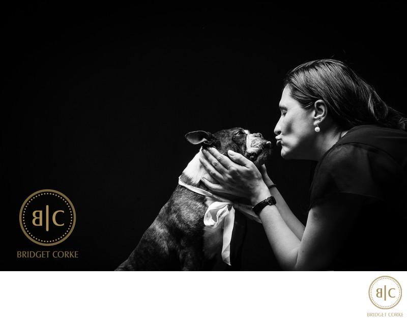 Top Boston Terrier Johannesburg Sheep Dog Pet Photographer