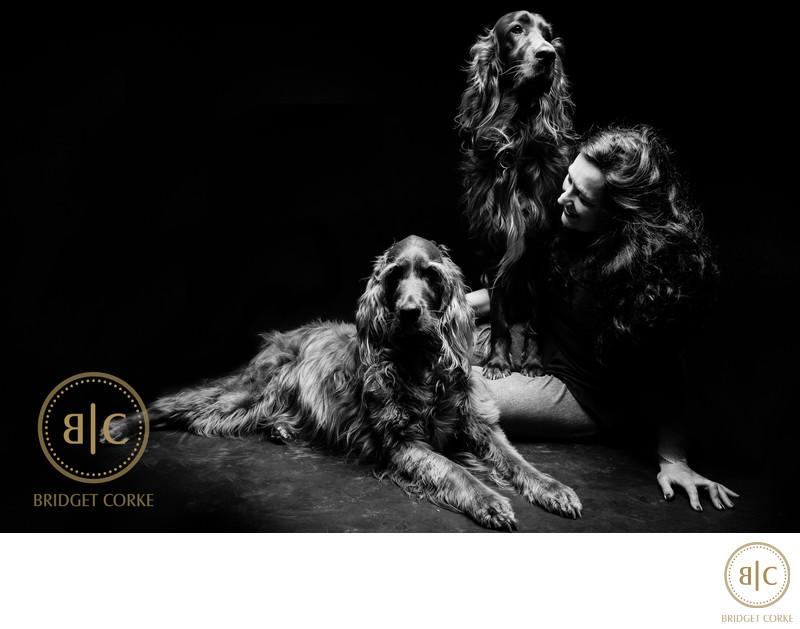 Best Irish Setter Dog Johannesburg Studio Photographer