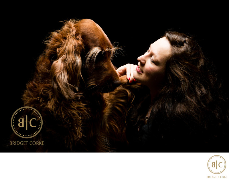 Best Irish Setter Family Dog Johannesburg Studio Photographer