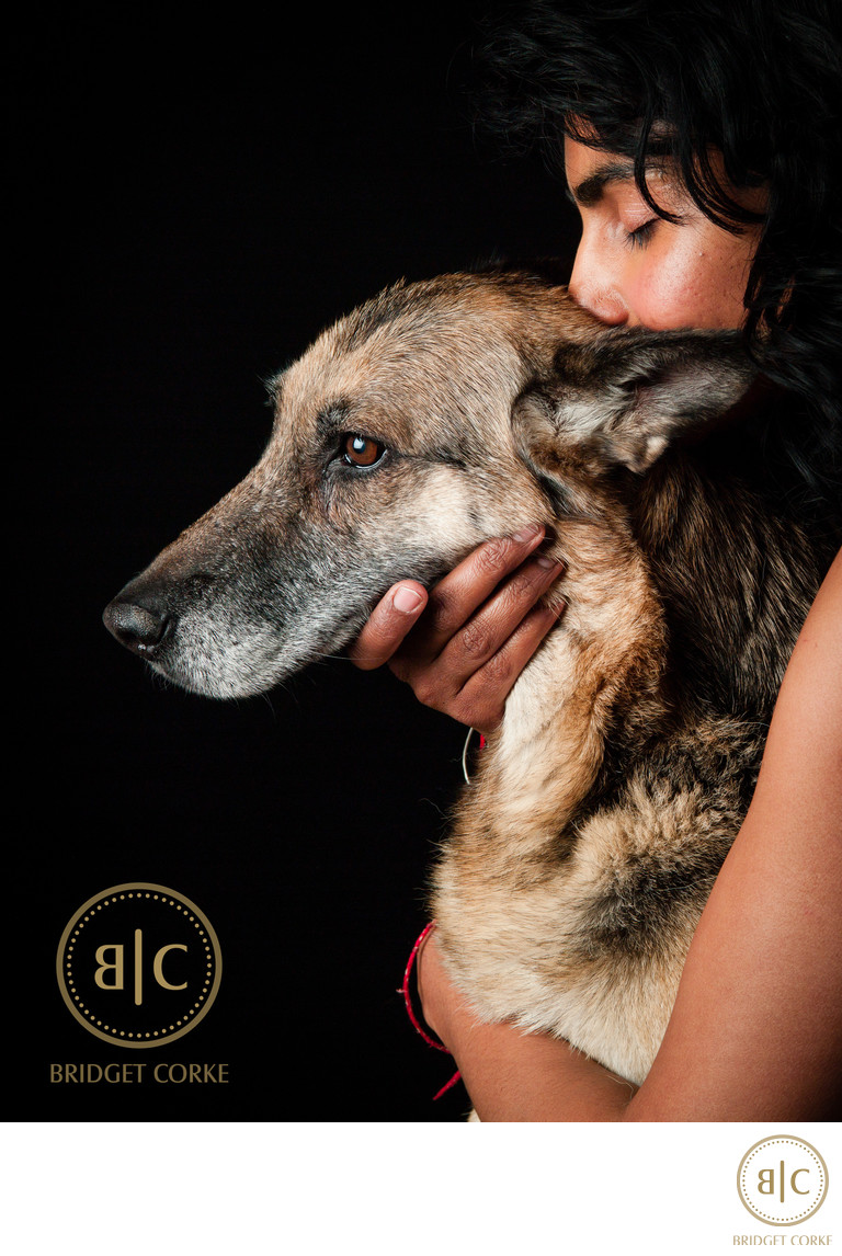 Belgian Shepherd Dog Pet Photographer Johannesburg