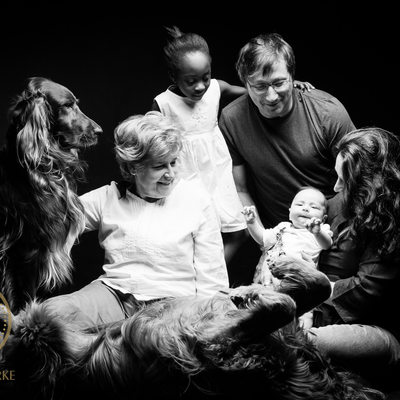 Baby Shoot with Family Dogs