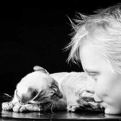 Top Johannesburg Bulldog Photographer