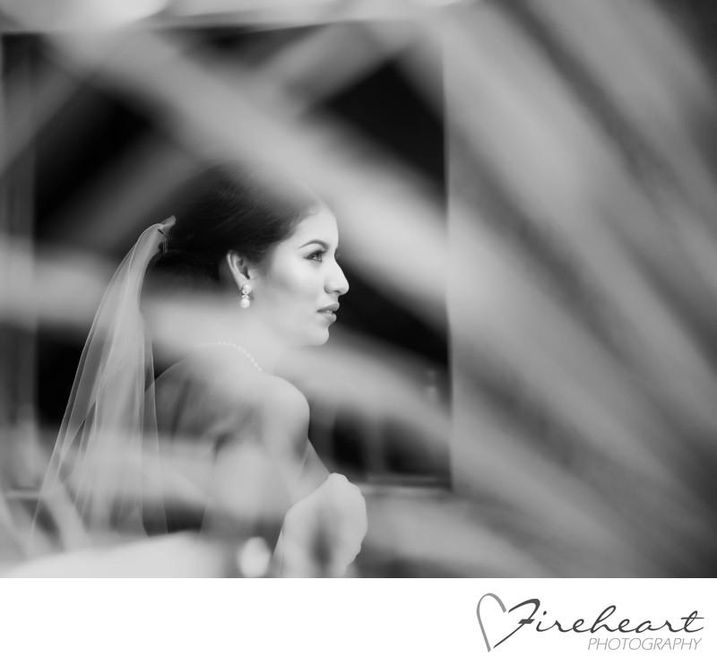 Houston Wedding photographer - Artistic Bridal Portraits