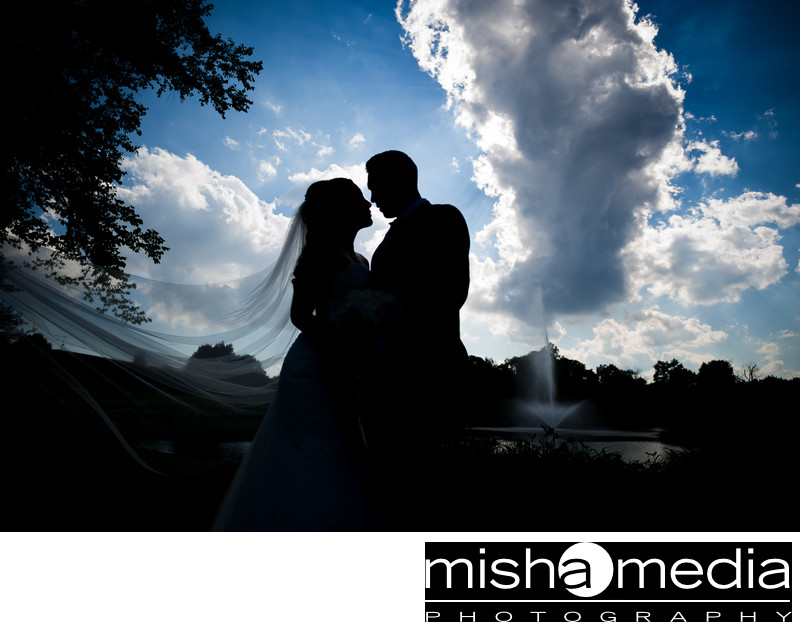 best itasca wedding photographer