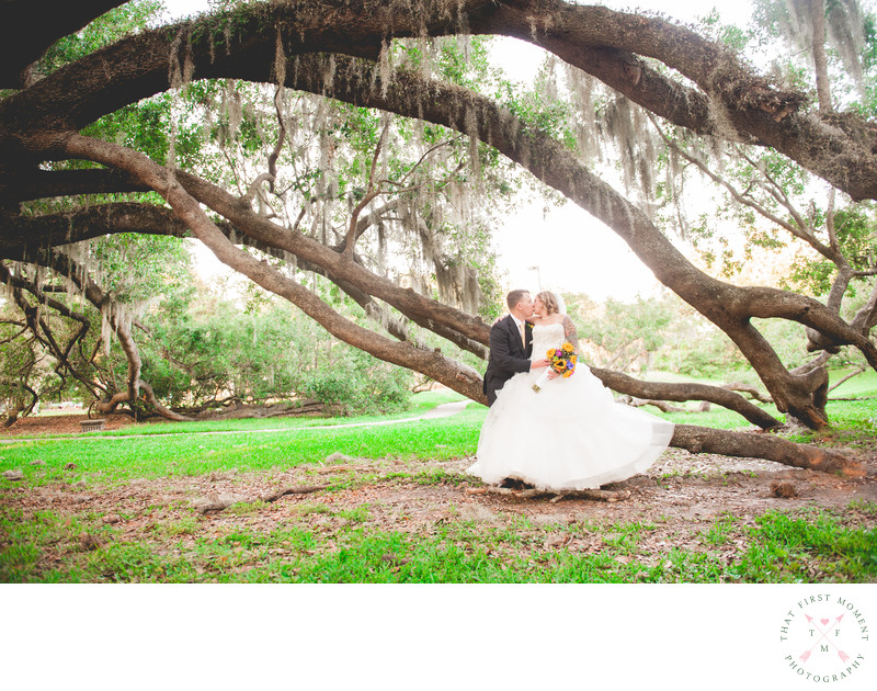 View More: http://clairepacelliphoto.pass.us/sashamike