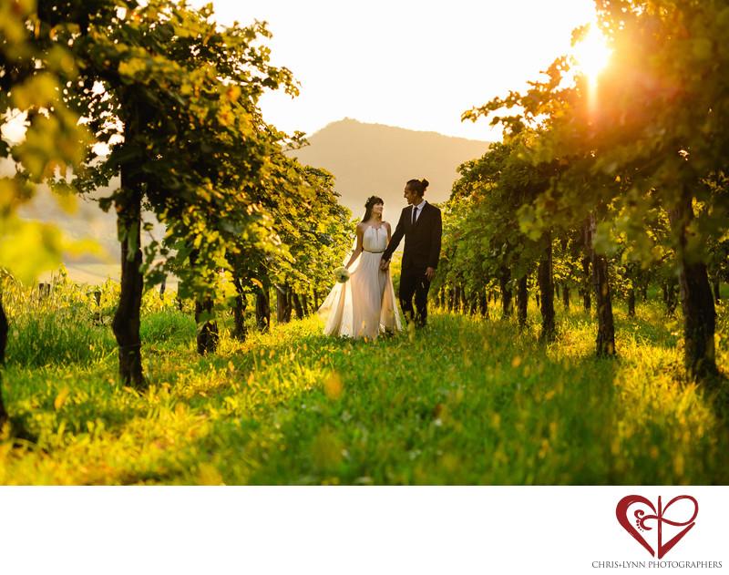 Vineyard Wedding Bride and Groom Photo