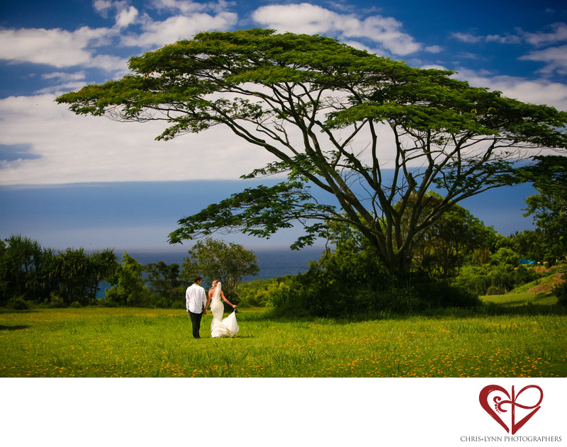 Hawaii Destination Wedding Photographers