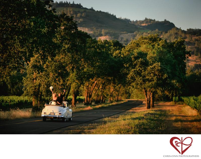 Napa Valley Wedding Photographers
