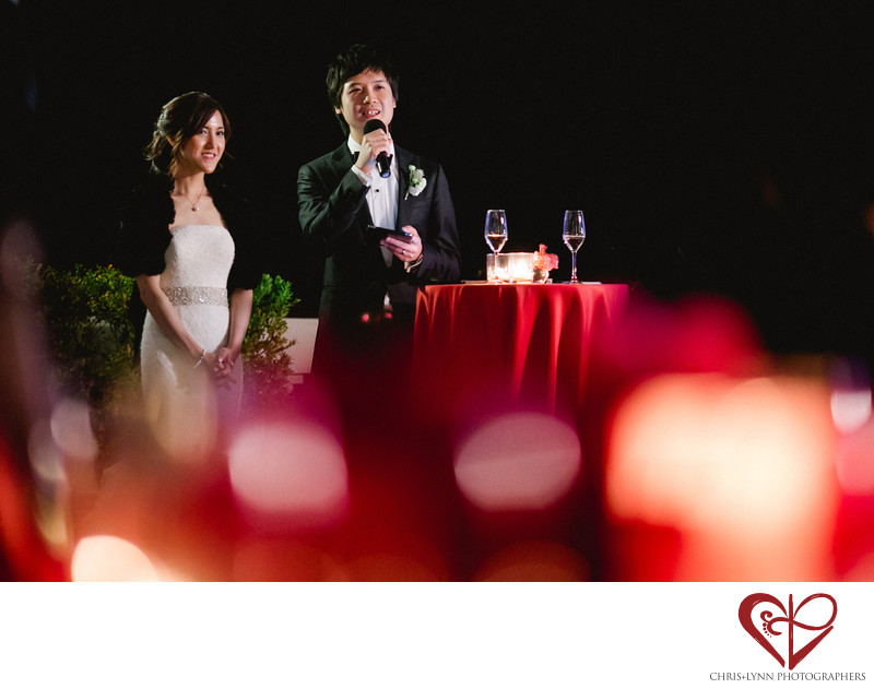 Villa La Vedetta Wedding reception, bride & groom speech