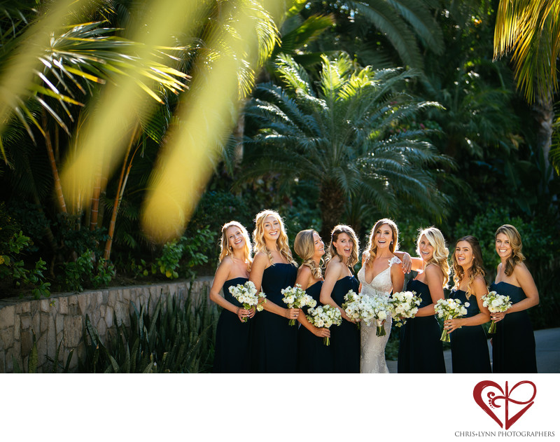 Best Palmilla Wedding Photos, Bridesmaids Pictures