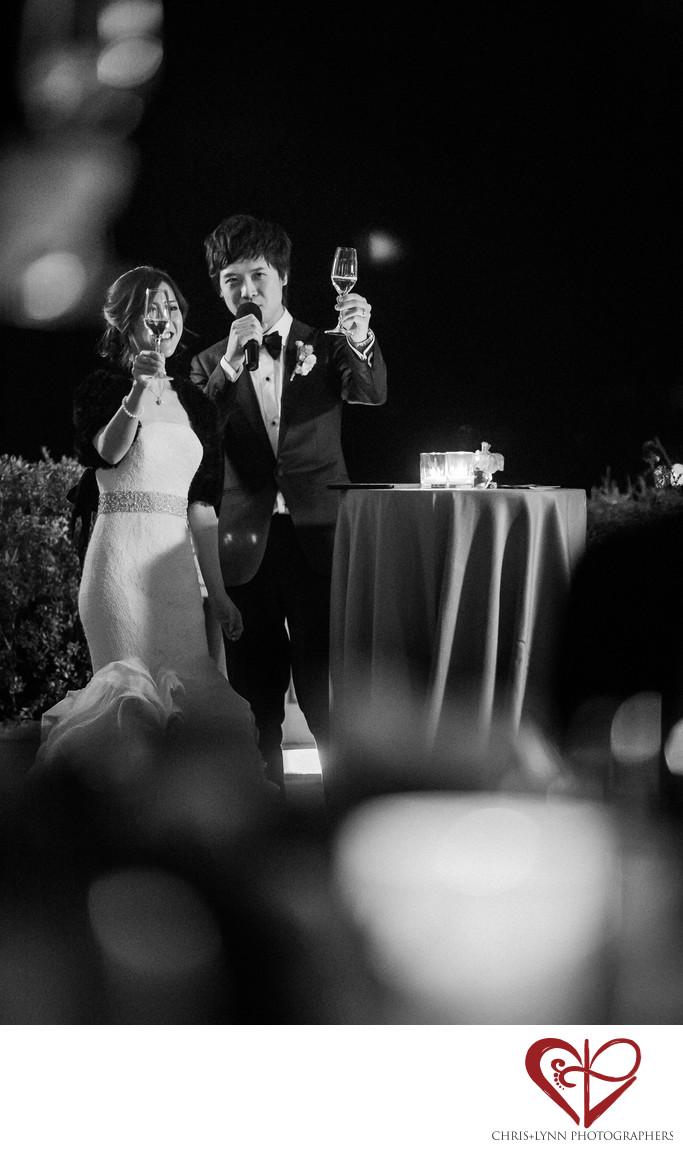 Villa La Vedetta Wedding reception, toast