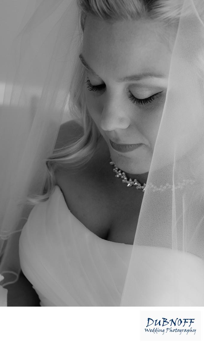 framed veil