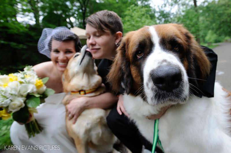 Dogs at LGBT Wedding in Columbus Ohio