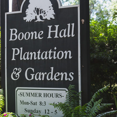 Boone Hall Plantation & Gardens Photographer