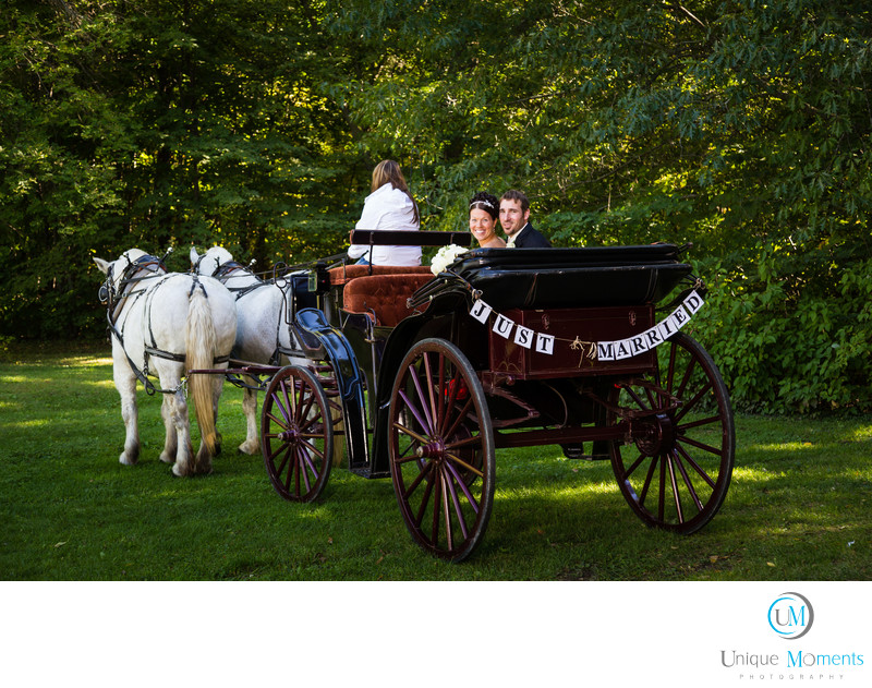 Tacoma Wedding Photographer Horse and Carriage Image