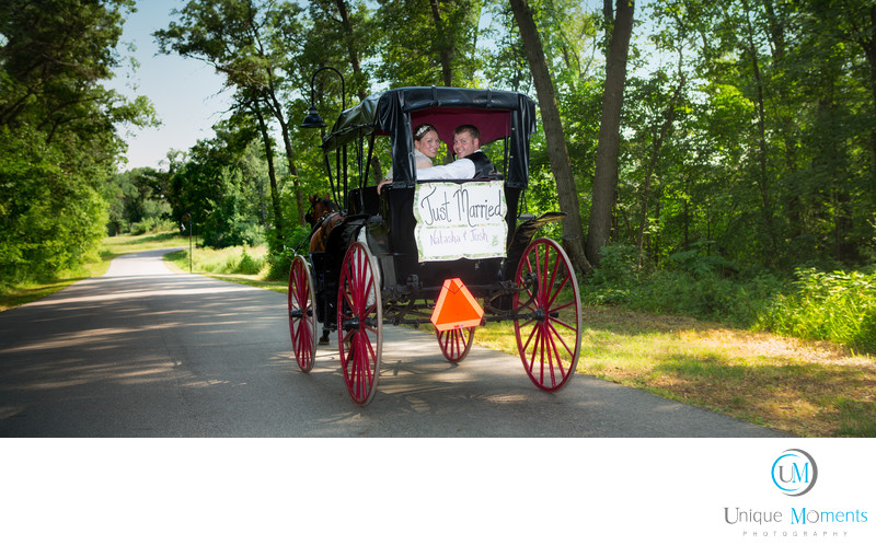 Tacoma Wedding Photographer Horse Drawn Carriage