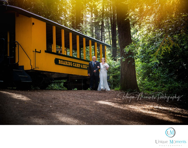 Roaring Camp Railroad Destination Wedding