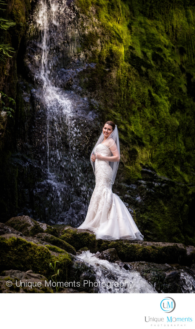 Day After Bridal Portrait Mt Rainier National Park