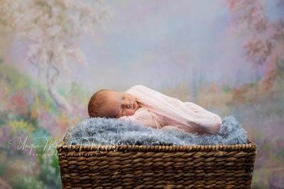 Infant newborn baby photographer Gig Harbor