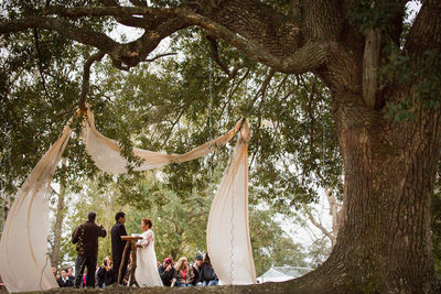 Indian River Tree Canopy Wedding Ceremony Gautier, MS