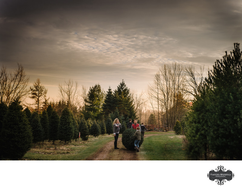 Christmas Tree Cutting Family Photographer